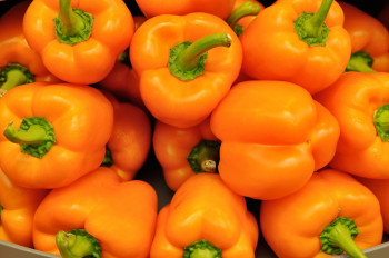 Poivrons Orange