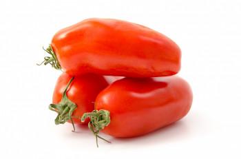 Tomate Allongée Torino