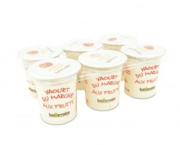 Yaourt du marché X6 - Abricot - Beillevaire