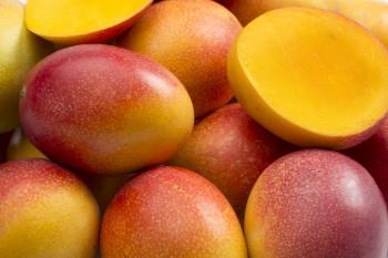 Mangue (Avion)