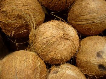 Noix de coco entière