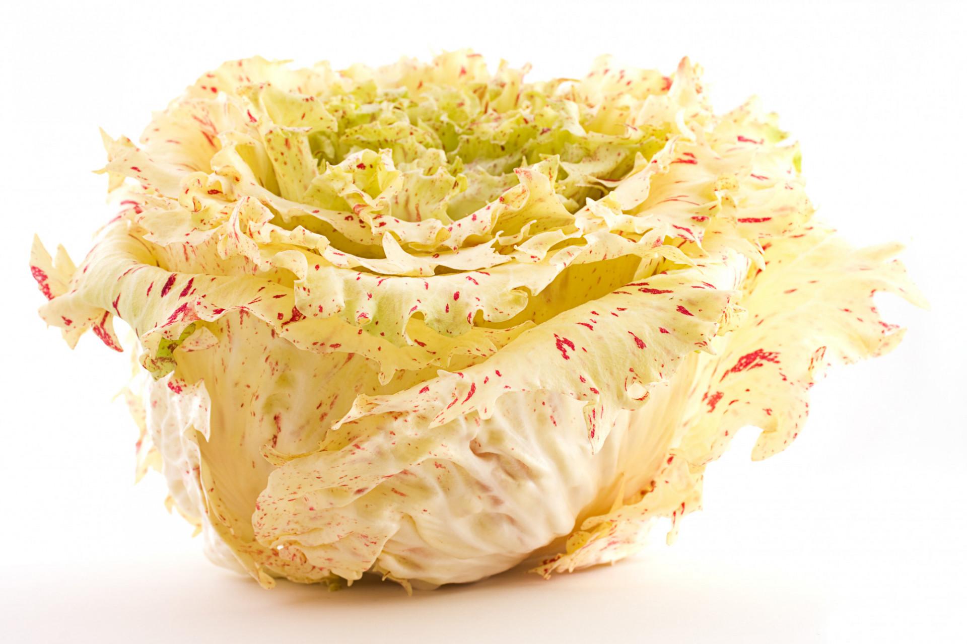 Salade Casteldifranco