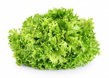 Salade Cornette