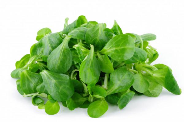 Salade Mache