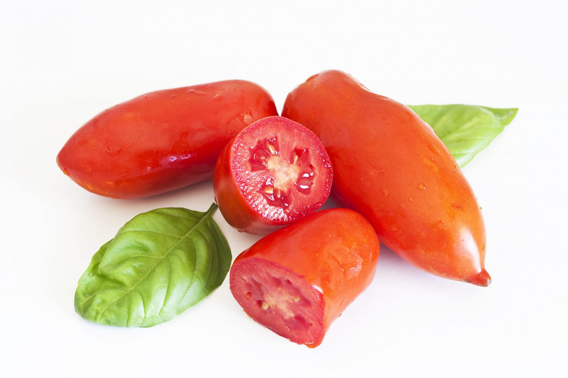 Tomate allongée San Marzano